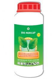 mau-chai-sp-bio-morcap-new